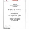 certyfikat-2008-1