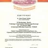 certyfikat-2008-11